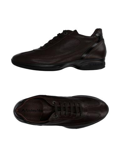 Foto ANDREA MORELLI Sneakers & Tennis shoes basse uomo