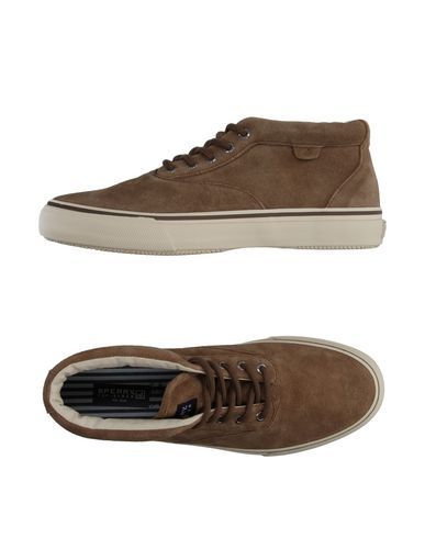 ������� ���� � ��������� SPERRY TOP-SIDER 11061008QW