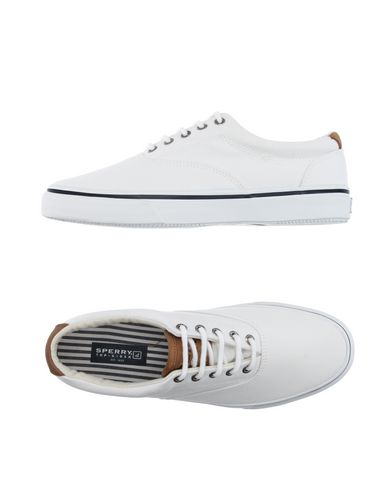 ������ ���� � ��������� SPERRY TOP-SIDER 11063570SP