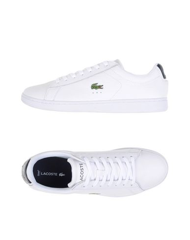 Foto LACOSTE Sneakers & Tennis shoes basse uomo