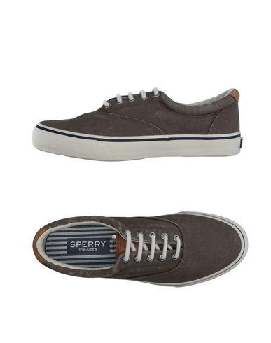 Низкие кеды и кроссовки SPERRY 11190720XU