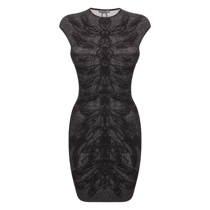 Alexander McQueen, Dragonfly Spine Lace Cap-Sleeve Mini-Dress