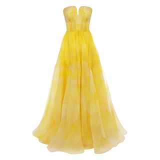 ALEXANDER MCQUEEN, Long Dress, Poppy Print Organza Bustier Dress