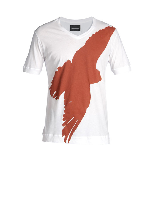 TAICI-EAGLE