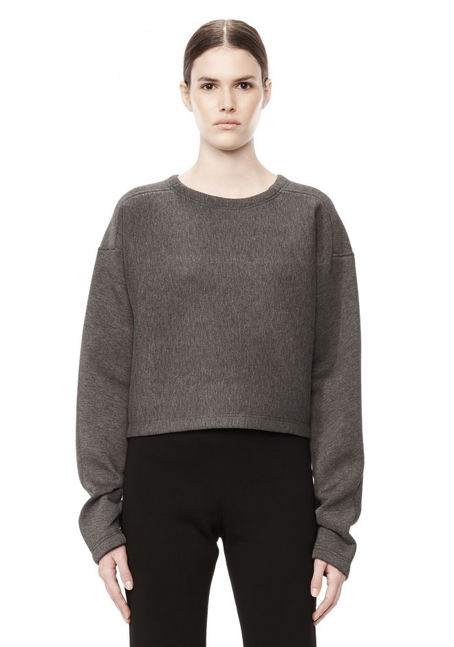T by ALEXANDER WANG SCUBA DOUBLE KNIT CREWNECK SWEATSHIRT TOP Adult 12_n_e