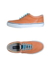 SPERRY TOP-SIDER - Trainers