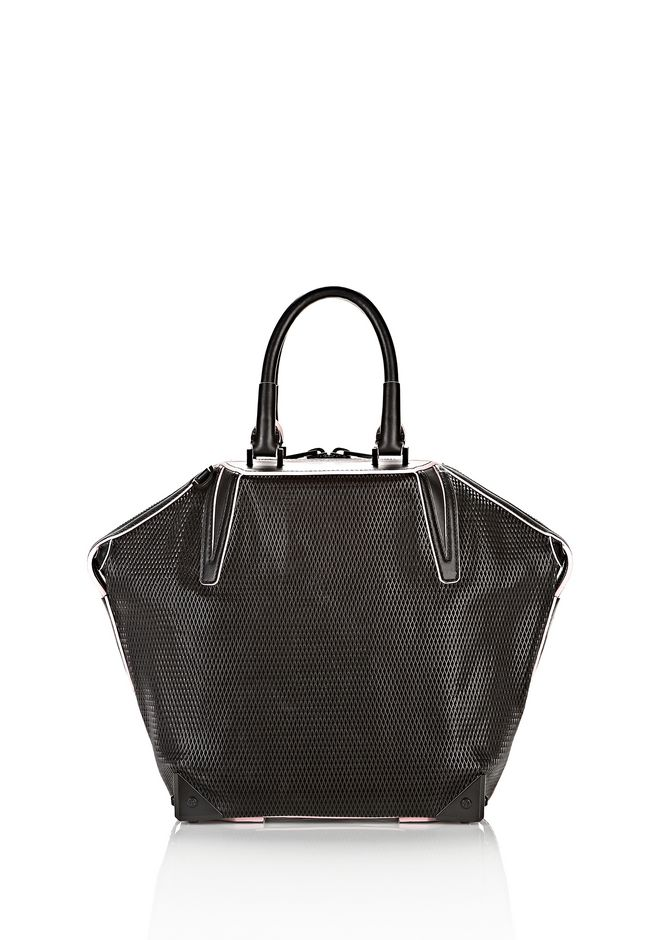 ALEXANDER WANG EMILE TOTE IN BLACK WITH MATTE BLACK TOTE Adult 12_n_a