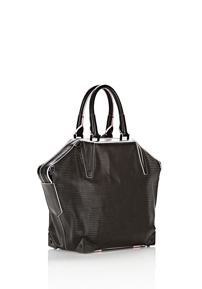 ALEXANDER WANG EMILE TOTE IN BLACK WITH MATTE BLACK TOTE Adult 12_n_e