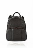 ALEXANDER WANG DUMBO BACKPACK IN BLACK WITH ROSE GOLD BACKPACK Adult 8_n_f