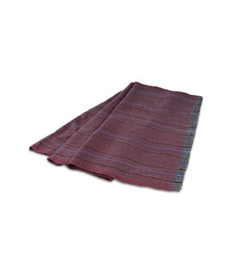 ERMENEGILDO ZEGNA: Scarf Blue - Dark brown - 46308374QP