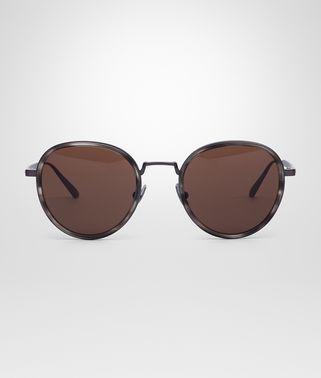 抛光钛金属和醋酸盐纤维太阳镜,配棕色镜片