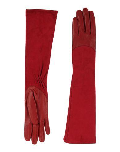 Перчатки ELISABETTA FRANCHI 46484148LR
