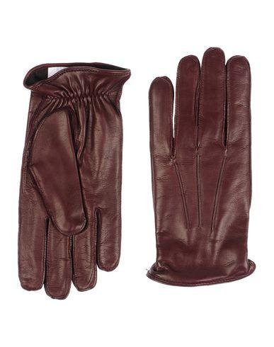 Перчатки DOLCE & GABBANA 46492491TG
