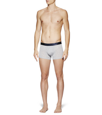 ERMENEGILDO ZEGNA: Boxer Light grey - 48170726AC