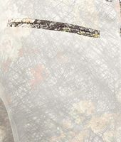 Floral Print Cotton Organza Pant