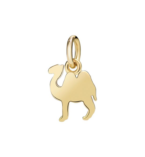 DODO Charms E fly f