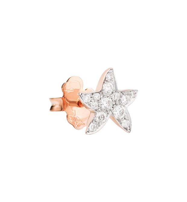 DODO Earrings E starfish stud earring f