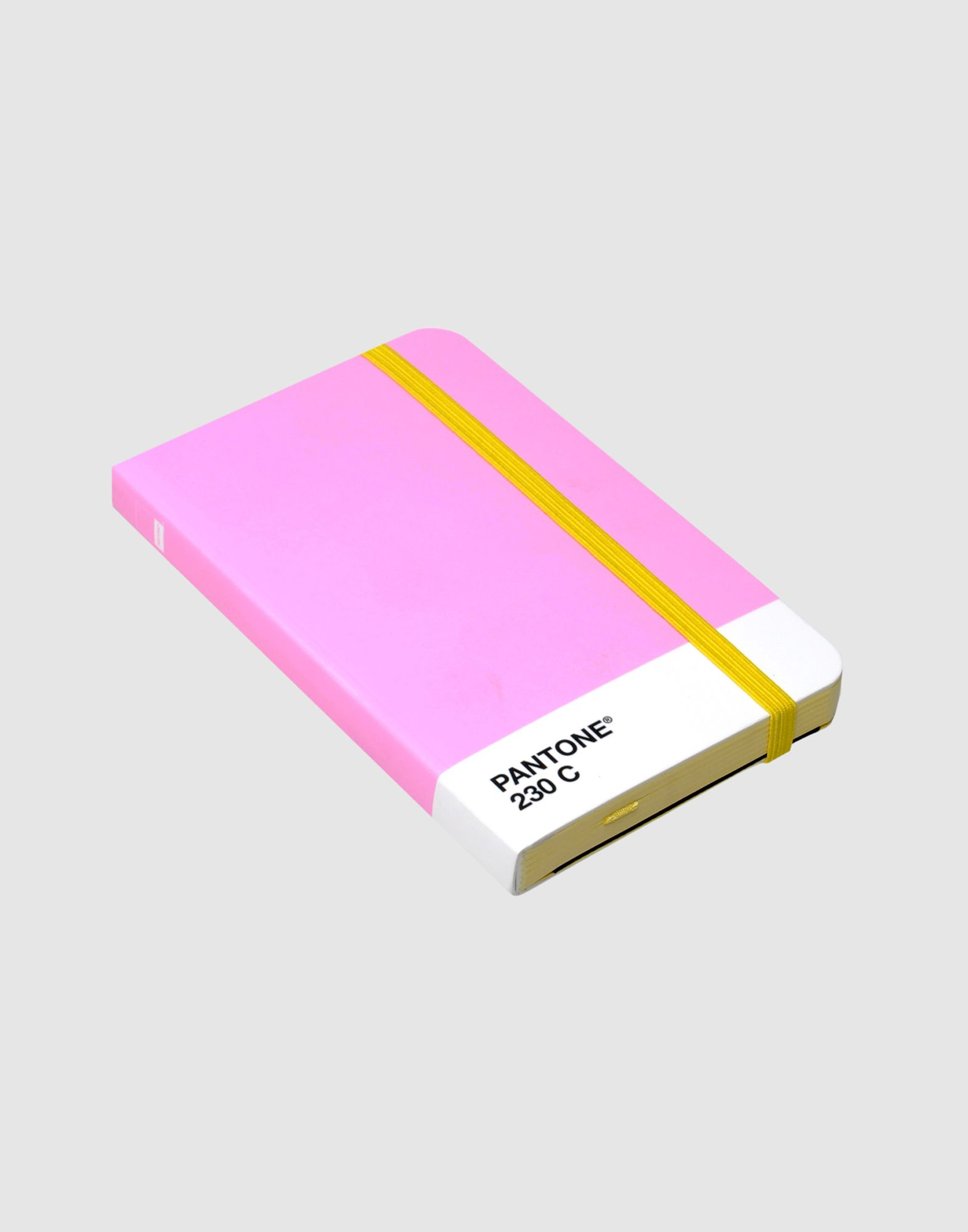 PANTONE Notebooks  Item 51116119 1