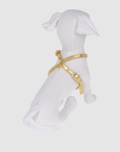 DVS DOG VIP STAR - Harness