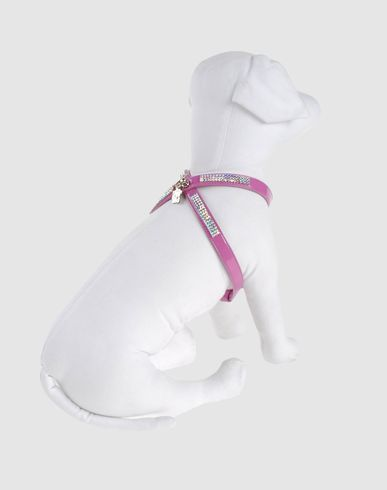 PET FOLLIE - Harness