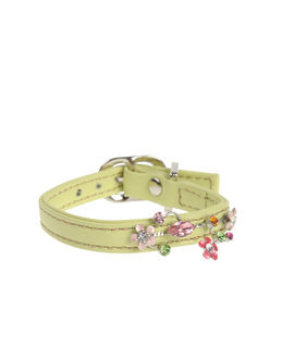 DVS DOG VIP STAR Collars - Item 58009133