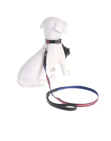 DVS DOG VIP STAR - Harness & Leash Set
