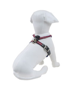 DVS DOG VIP STAR Harnesses - Item 58009135