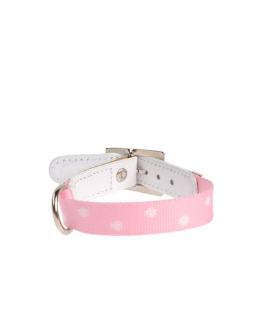 DVS DOG VIP STAR - Collar