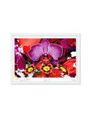 Yoox.fr - Marc quinn kashi sunrise lotus ?uvre graphique mixte