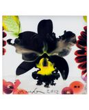 Yoox.fr - Marc quinn small square limited edition print i ?uvre graphique mixte