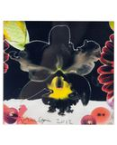 Yoox.fr - Marc quinn small square limited edition print iii ?uvre graphique mixte
