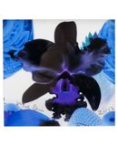 Yoox.fr - Marc quinn small square limited edition print ix ?uvre graphique mixte