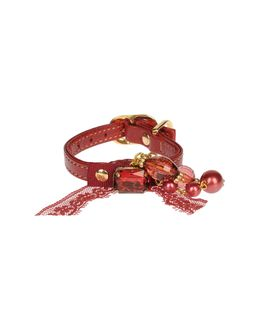 DVS DOG VIP STAR Collars - Item 58010835