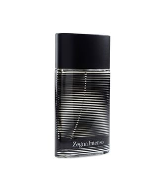 Parfm 100 ml  ERMENEGILDO ZEGNA