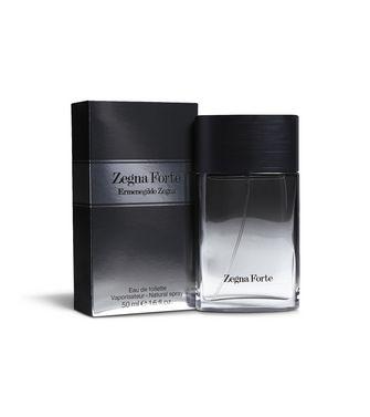 ERMENEGILDO ZEGNA: Zegna Forte (-) - 62000646CN