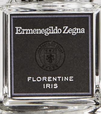 ERMENEGILDO ZEGNA: Florentine Iris  - 62000806XU