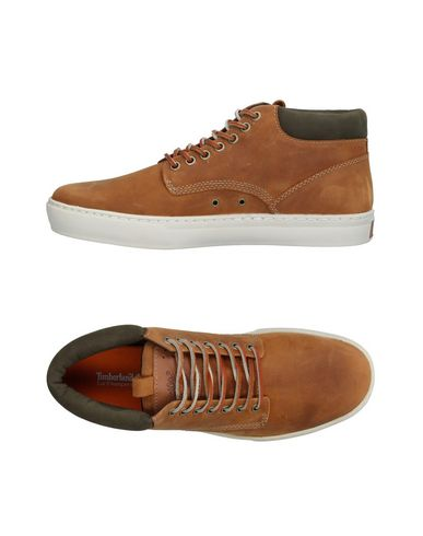 TIMBERLAND Sneakers & Tennis montantes homme