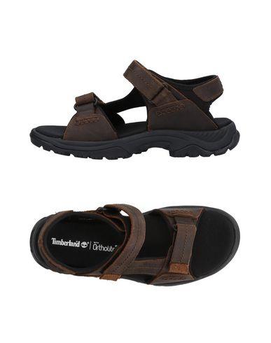 zapatillas TIMBERLAND Sandalias hombre