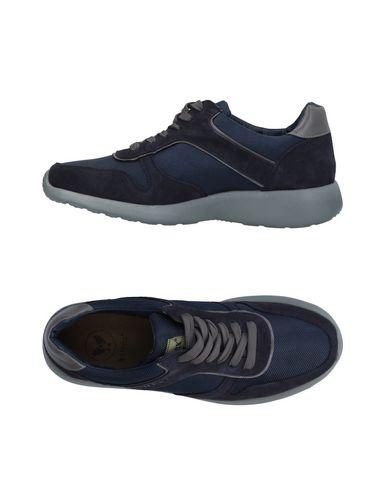zapatillas AVIREX Sneakers & Deportivas hombre
