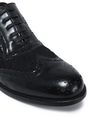 DOLCE & GABBANA Embroidered mesh and perforated leather brogues