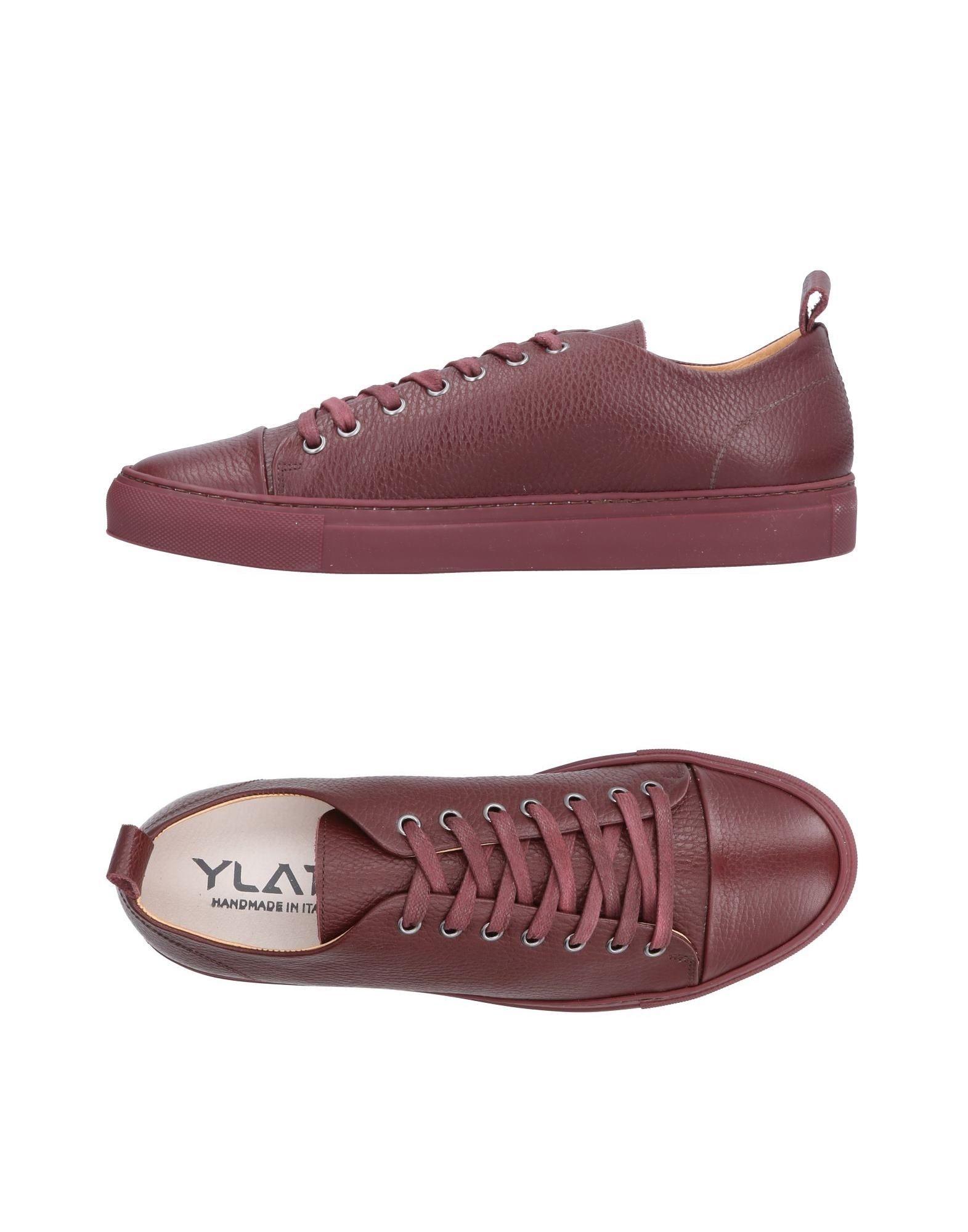 YLATI Sneakers in Maroon