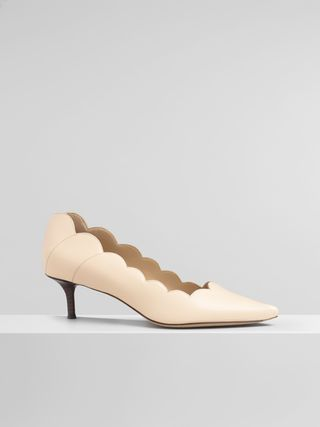 Pointy Lauren pump