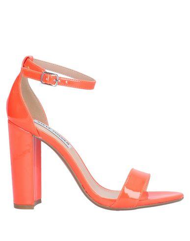 Купить Женские сандали STEVE MADDEN оранжевого цвета