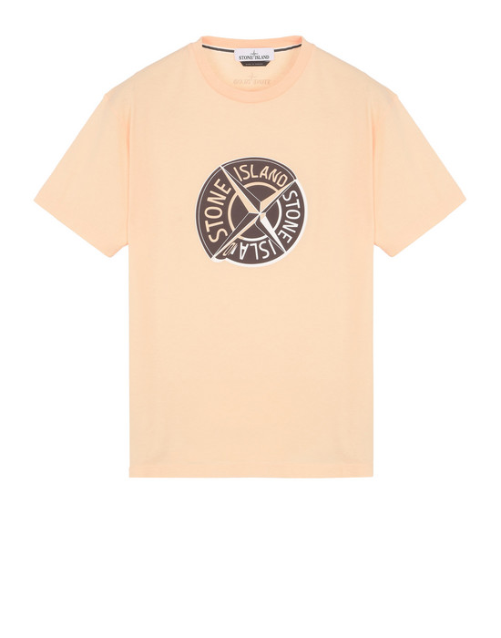 STONE ISLAND Short sleeve t-shirt 2NS89 GRAPHIC TEN