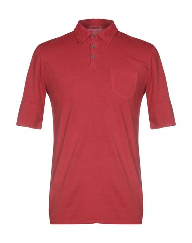 CROSSLEY Polo homme