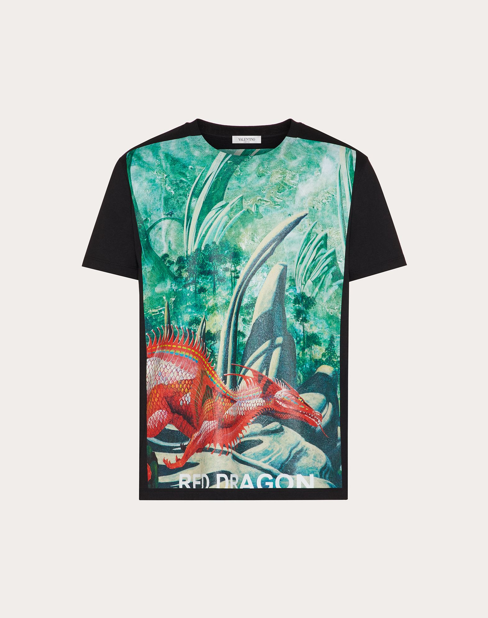 DRAGONS GARDEN PRINT T-SHIRT