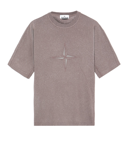 STONE ISLAND 24555 FLECK TREATMENT Short sleeve t-shirt Man MAHOGANY BROWN