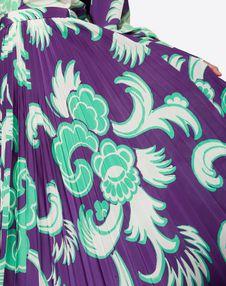 Graphic Arras Crepe de Chine Pleated Skirt
