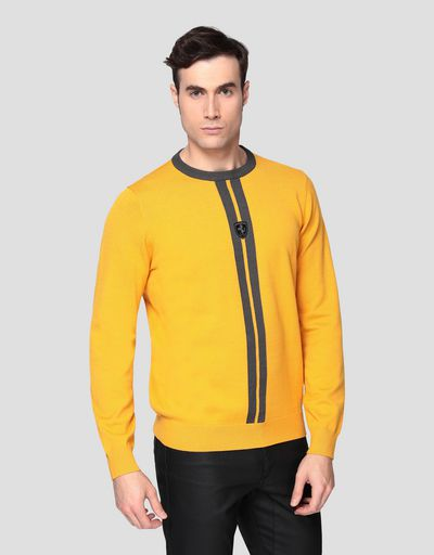 Men's knitted sweater with livery pattern