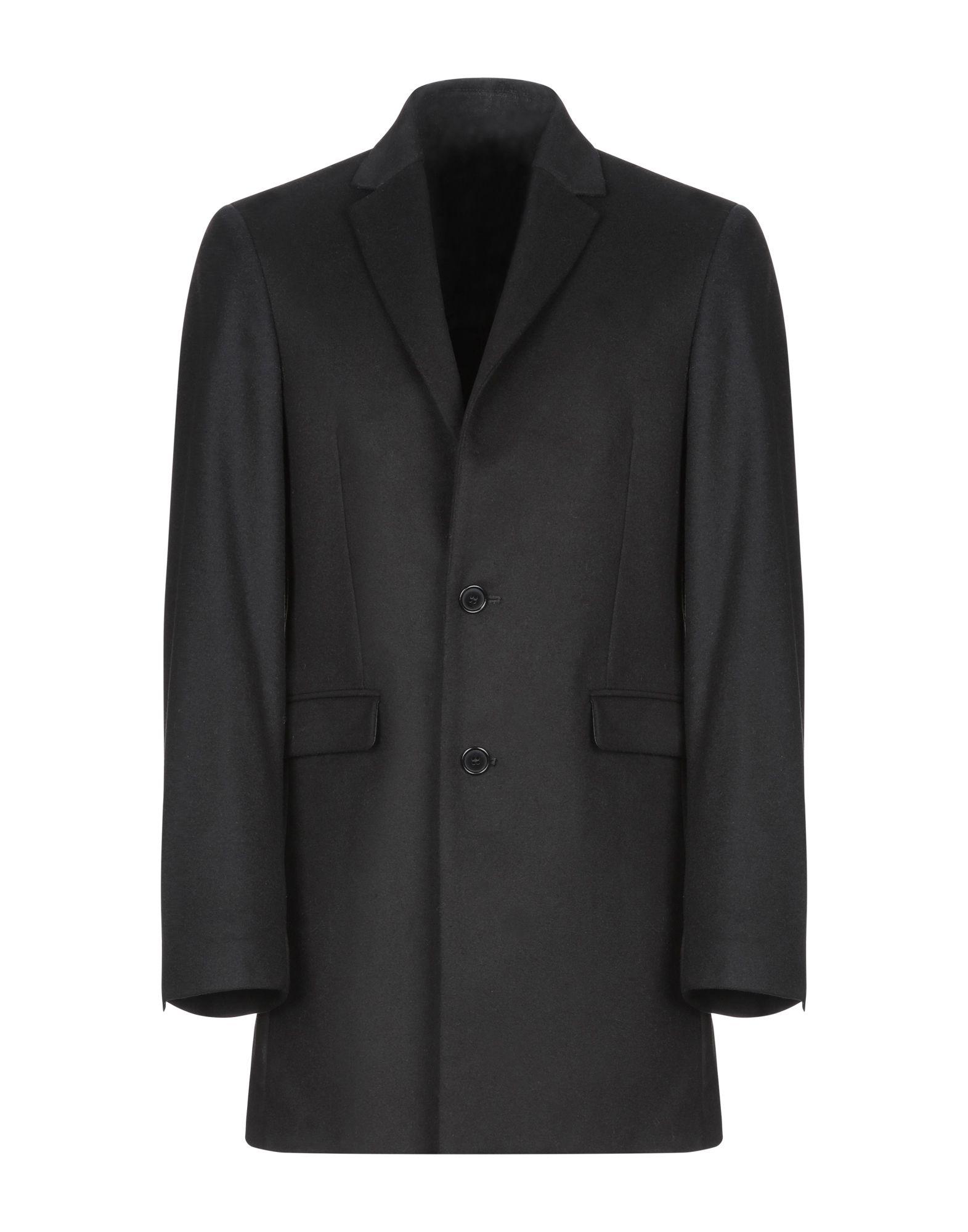 цены DAVID NAMAN Пальто
